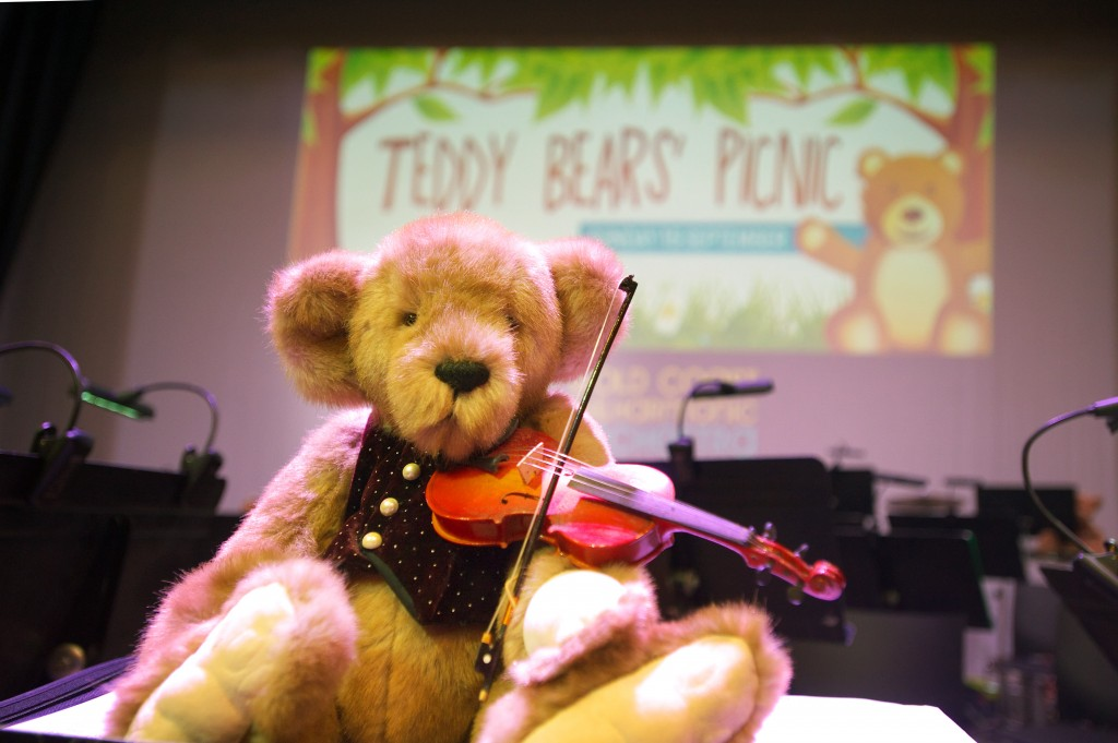 Teddy Bears' Picnic at Helensvale